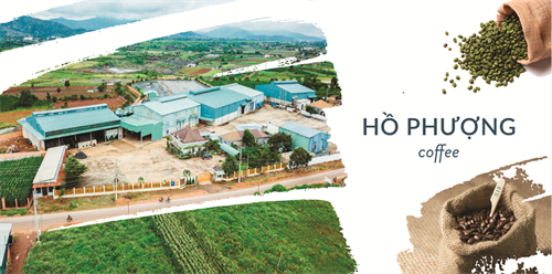 Welcome to the website Ho Phuong Limited Company