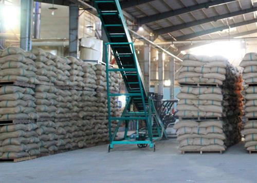 Vietnam: coffee exports fell sharply in 3/2015