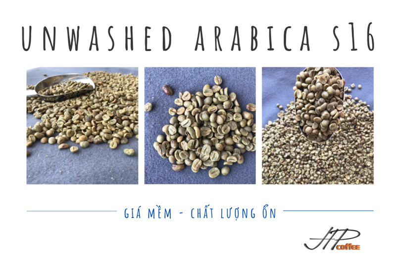Unwashed Arabica - Screen 16